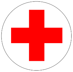 Redcross Medical Records In The Cloud