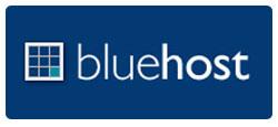 black friday bluehost deals