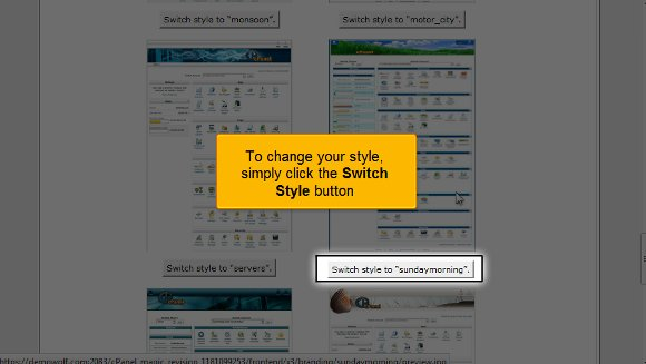 02-switch-style cPanel Style
