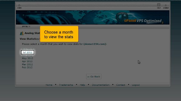 Website stats in cPanel